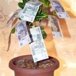 денежное дерево на свадьбу