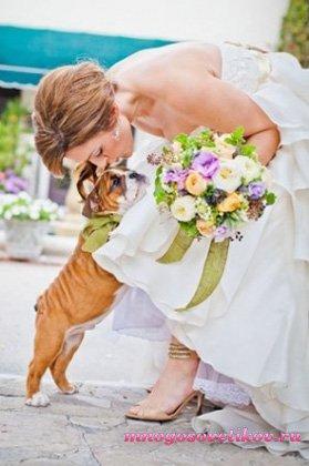 аксессуары для свадебной фотосессии